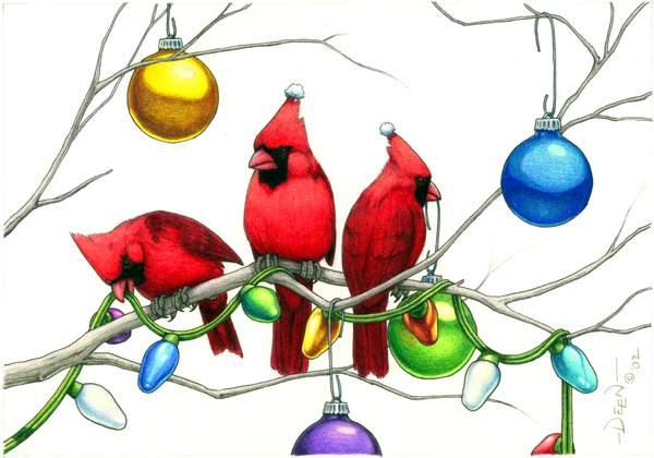Christmas Cardinals Images.David Deen Webstudio Christmas Cardinals